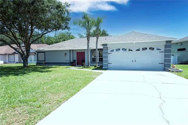 4802 Mill Run Drive, New Port Richey, FL 34653 (MLS #U8120885) :: The Hesse Team