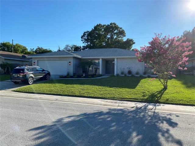 Safety Harbor, FL 34695 :: Memory Hopkins Real Estate