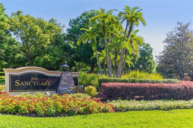 3316 W Chase Jackson Branch, Lutz, FL 33559 (MLS #U8120977) :: Premier Home Experts