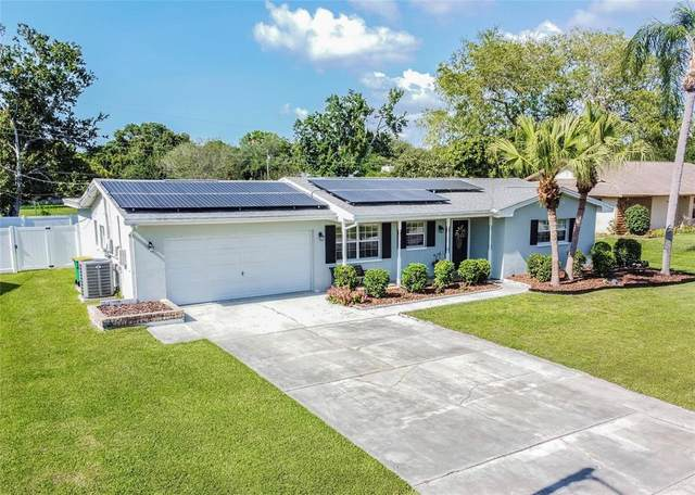 1664 Palmwood Drive, Clearwater, FL 33756 (MLS #U8121071) :: The Hesse Team