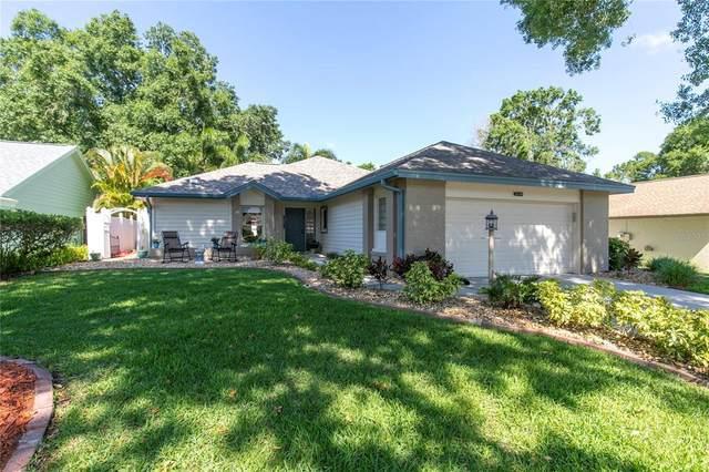 2668 Savoy Lane, Palm Harbor, FL 34684 (MLS #U8121074) :: Team Borham at Keller Williams Realty
