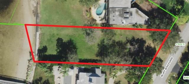 0 Bluff Boulevard, Holiday, FL 34691 (MLS #U8121078) :: Zarghami Group