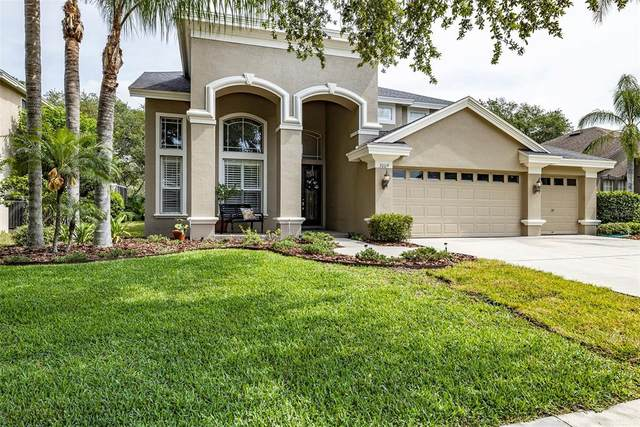 3009 Naughton Way, Tarpon Springs, FL 34688 (MLS #U8121166) :: Team Borham at Keller Williams Realty