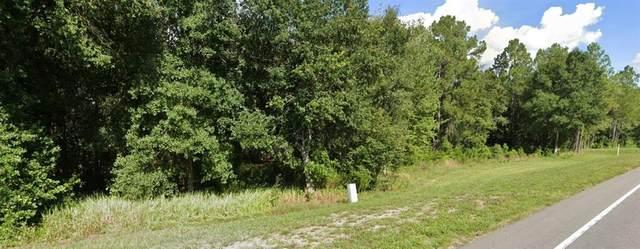 Commonwealth Avenue N, Polk City, FL 33868 (MLS #U8121356) :: Southern Associates Realty LLC