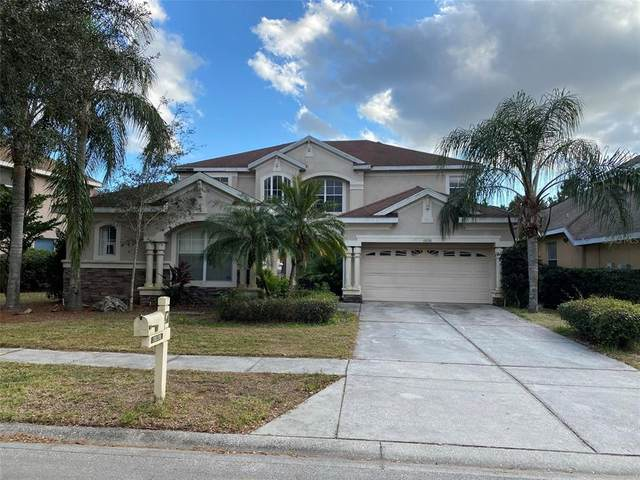 10130 Deercliff Drive, Tampa, FL 33647 (MLS #U8121439) :: Team Borham at Keller Williams Realty
