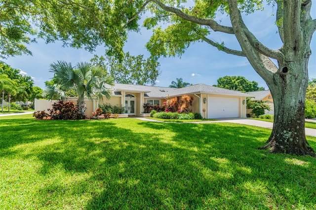 1562 Virginia Avenue, Palm Harbor, FL 34683 (MLS #U8121481) :: The Hesse Team