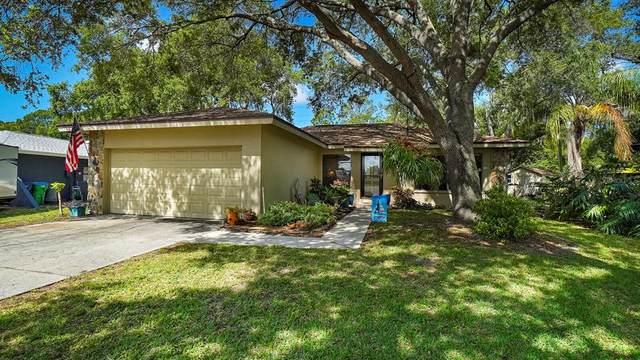 9790 Parkwood Court, Seminole, FL 33777 (MLS #U8121536) :: Heckler Realty