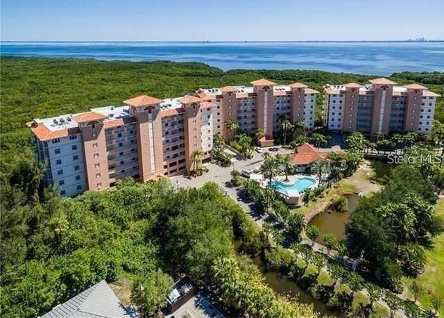12033 Gandy Boulevard N #154, St Petersburg, FL 33702 (MLS #U8121569) :: Gate Arty & the Group - Keller Williams Realty Smart