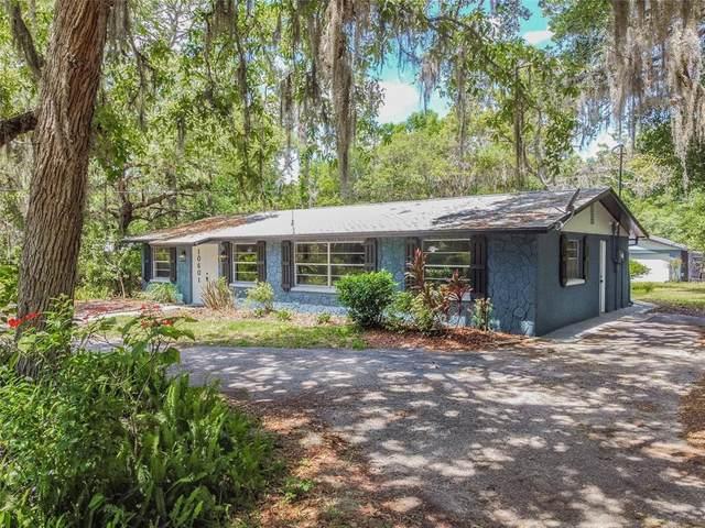 10601 Kim Lane, Hudson, FL 34669 (MLS #U8121579) :: Premier Home Experts