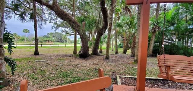 293 Bear Trail, Lake Wales, FL 33898 (MLS #U8121580) :: Armel Real Estate