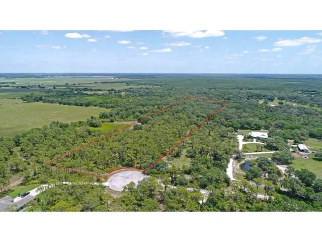 30730 Saddlebag Trail, Myakka City, FL 34251 (MLS #U8121619) :: Bustamante Real Estate