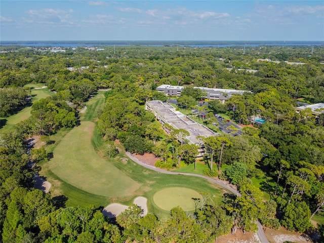 36750 Us Highway 19 N 20-309, Palm Harbor, FL 34684 (MLS #U8121755) :: Visionary Properties Inc