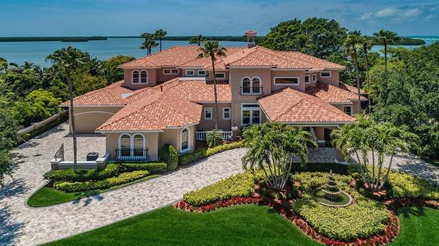 1997 Oceanview Drive, Tierra Verde, FL 33715 (MLS #U8121781) :: The Duncan Duo Team