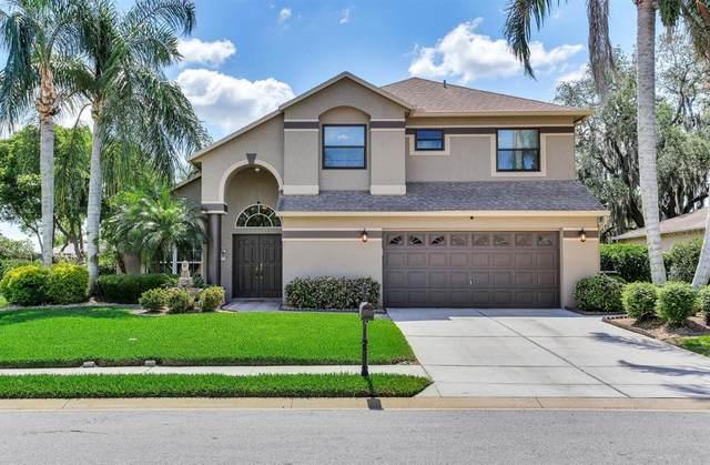 2118 Edelweiss Loop, Trinity, FL 34655 (MLS #U8121792) :: Premier Home Experts