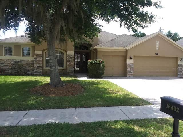 16402 Ivy Lake Drive, Odessa, FL 33556 (MLS #U8121843) :: Team Borham at Keller Williams Realty