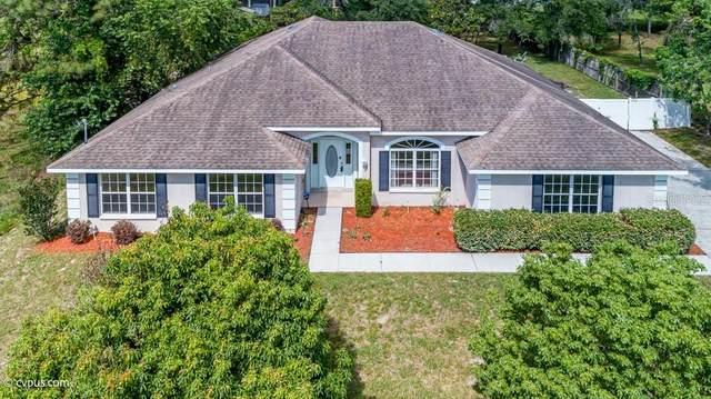 12373 Horner Road, Weeki Wachee, FL 34614 (MLS #U8121880) :: Premium Properties Real Estate Services