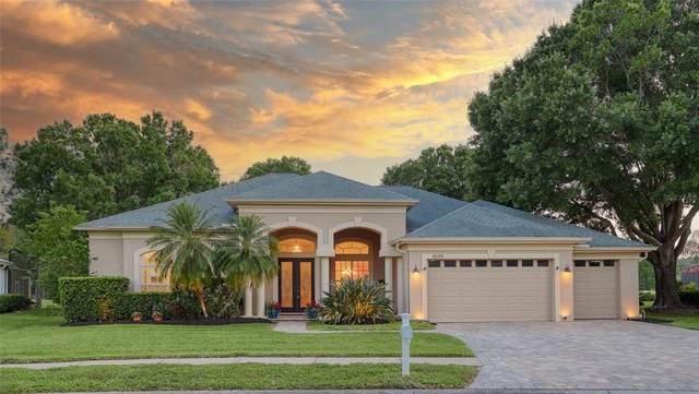 16314 Birkdale Drive, Odessa, FL 33556 (MLS #U8121940) :: Premier Home Experts