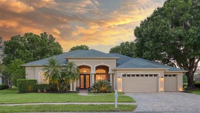 16314 Birkdale Drive, Odessa, FL 33556 (MLS #U8121940) :: Premier Home Experts