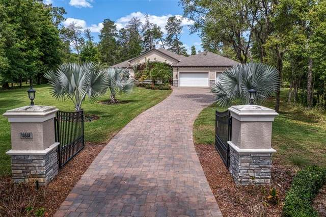 13537 Gopher Pond Court, Hudson, FL 34669 (MLS #U8122109) :: Globalwide Realty