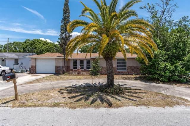 11236 Yellowwood Lane, Port Richey, FL 34668 (MLS #U8122111) :: Rabell Realty Group