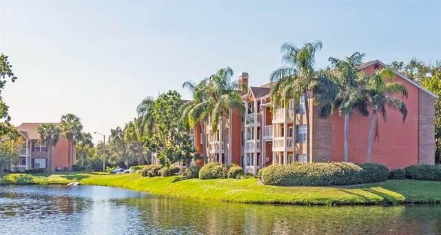 10200 Gandy Boulevard N #936, St Petersburg, FL 33702 (MLS #U8122177) :: Team Bohannon Keller Williams, Tampa Properties
