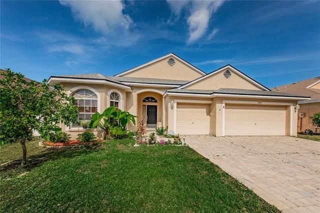 1877 Wood Brook Street, Tarpon Springs, FL 34689 (MLS #U8122237) :: CGY Realty