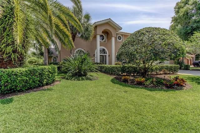 3902 Moreno Drive, Palm Harbor, FL 34685 (MLS #U8122243) :: Pepine Realty