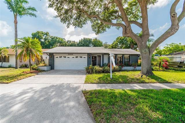 9428 Laura Anne Drive, Seminole, FL 33776 (MLS #U8122247) :: Griffin Group
