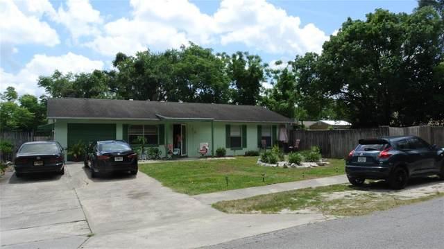 719 Hale Avenue, Brooksville, FL 34601 (MLS #U8122301) :: Lockhart & Walseth Team, Realtors