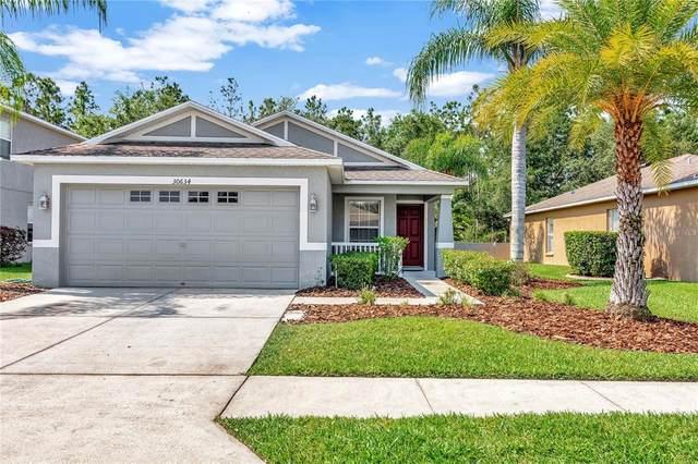 30634 White Bird Avenue, Wesley Chapel, FL 33543 (MLS #U8122346) :: Team Borham at Keller Williams Realty