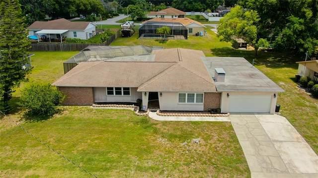 3238 Lake Saxon Drive, Land O Lakes, FL 34639 (MLS #U8122390) :: Premier Home Experts