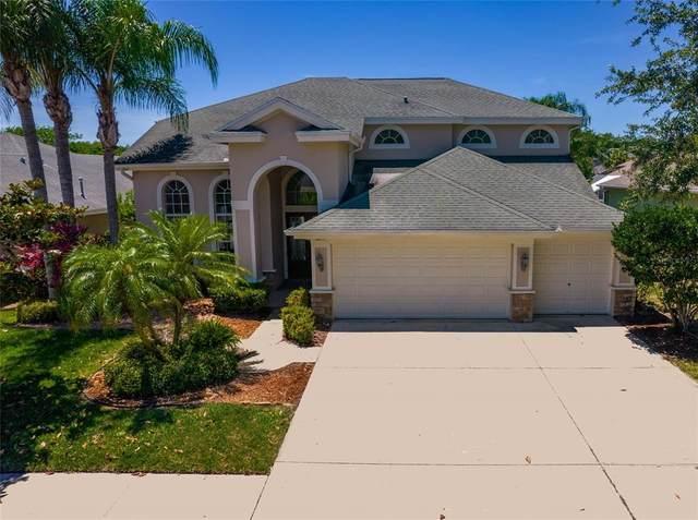 3019 Northfield Drive, Tarpon Springs, FL 34688 (MLS #U8122403) :: Globalwide Realty