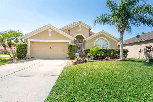 22836 Sills Loop, Land O Lakes, FL 34639 (MLS #U8122410) :: Premier Home Experts