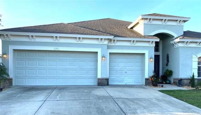 6751 Boulder Run Loop, Wesley Chapel, FL 33545 (MLS #U8122437) :: Aybar Homes
