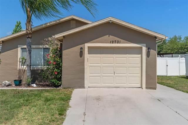 12701 Skipper Lane, Hudson, FL 34669 (MLS #U8122456) :: Premier Home Experts