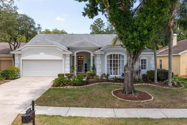 4335 Tremblay Way, Palm Harbor, FL 34685 (MLS #U8122480) :: The Robertson Real Estate Group