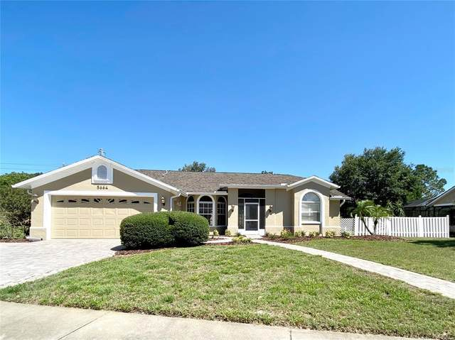 5664 Mossberg Drive, New Port Richey, FL 34655 (MLS #U8122482) :: Premier Home Experts