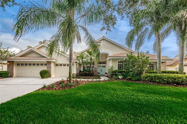 3516 Woodridge Place, Palm Harbor, FL 34684 (MLS #U8122505) :: The Heidi Schrock Team