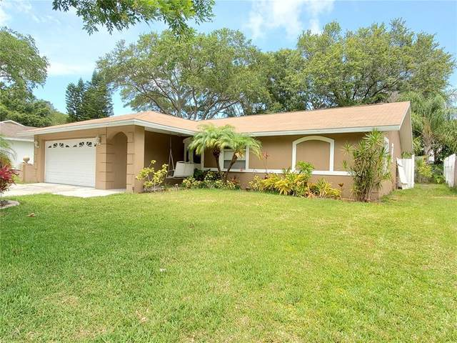 1312 Markley Drive, Largo, FL 33770 (MLS #U8122535) :: Your Florida House Team