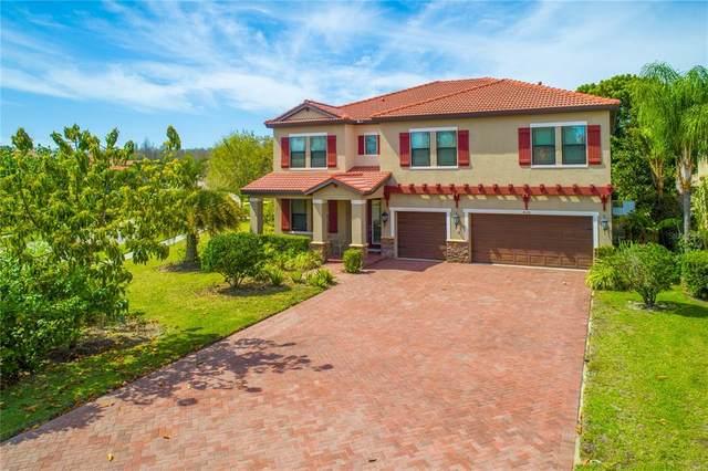 4526 Grand Lakeside Drive, Palm Harbor, FL 34684 (MLS #U8122540) :: The Heidi Schrock Team