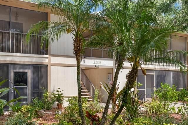 3205 Fox Chase Circle N #203, Palm Harbor, FL 34683 (MLS #U8122562) :: Griffin Group