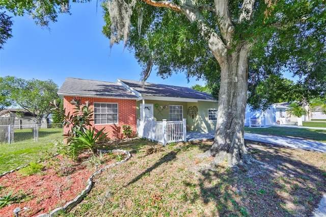 7664 Jenner Avenue, New Port Richey, FL 34655 (MLS #U8122586) :: Premier Home Experts