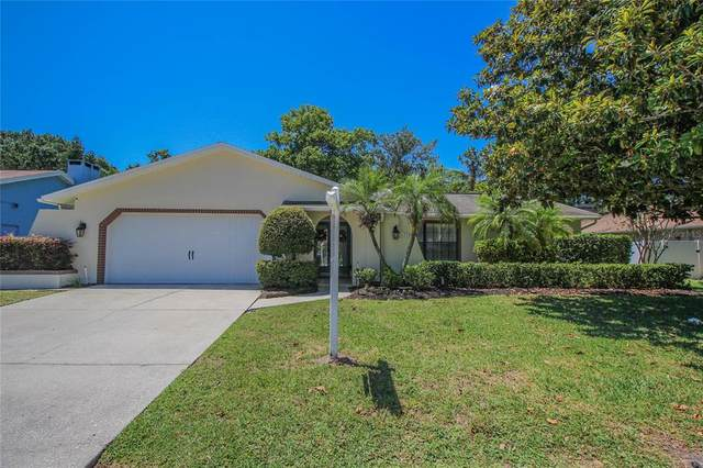 3388 Brian Road S, Palm Harbor, FL 34685 (MLS #U8122637) :: Delgado Home Team at Keller Williams