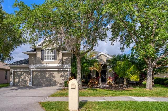 504 Lakewood Drive, Oldsmar, FL 34677 (MLS #U8122651) :: Premium Properties Real Estate Services