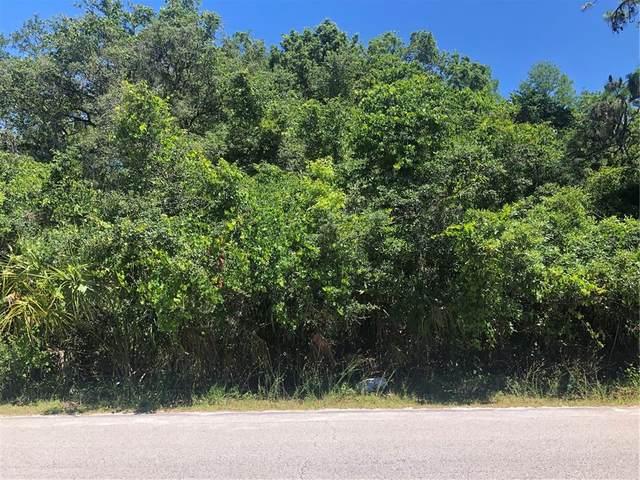 Royal Palm Avenue, New Port Richey, FL 34654 (MLS #U8122657) :: Visionary Properties Inc