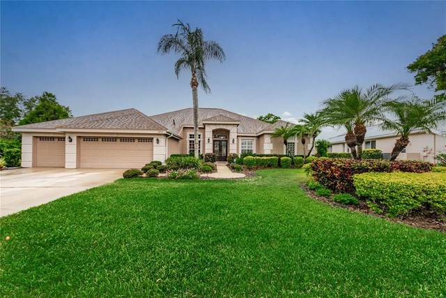 3970 Arlington Drive, Palm Harbor, FL 34685 (MLS #U8122715) :: Delgado Home Team at Keller Williams