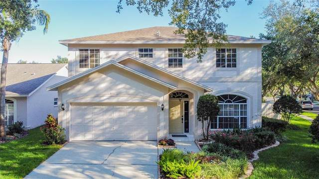17759 Oak Bridge Street, Tampa, FL 33647 (MLS #U8122718) :: Globalwide Realty