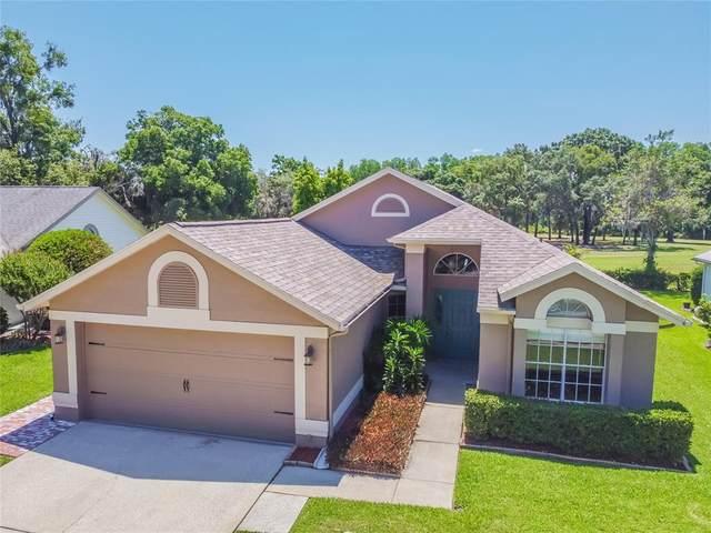 13208 Titleist Drive, Hudson, FL 34669 (MLS #U8122733) :: Delgado Home Team at Keller Williams