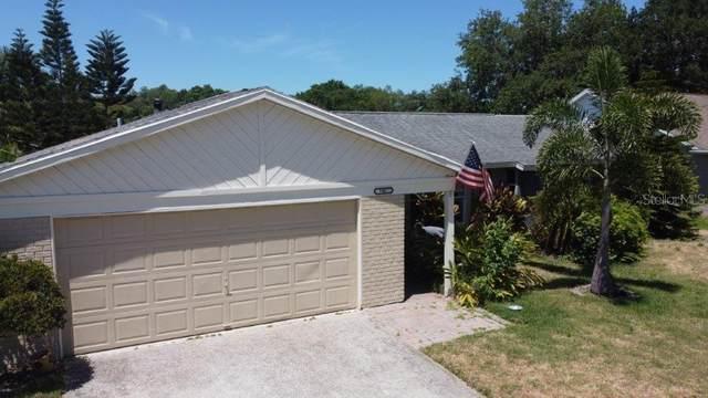 706 Jacaranda Drive, Oldsmar, FL 34677 (MLS #U8122737) :: SunCoast Home Experts
