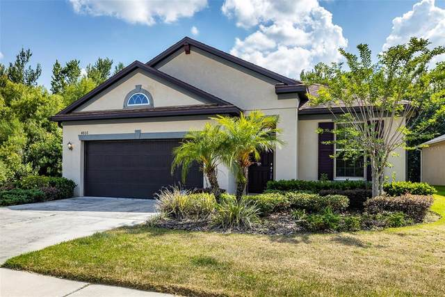 4866 Rolling Green Drive, Wesley Chapel, FL 33543 (MLS #U8122738) :: Sarasota Property Group at NextHome Excellence